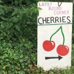 Cherry Soup - A one person show by Sara Clifford, performed by Jo Neary.